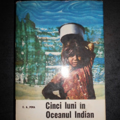 E. A. PORA - CINCI LUNI IN OCEANUL INDIAN (editie cartonata)