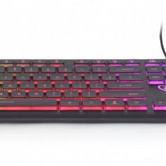 Tastatura cu fir Gembrid USB - KB-UML-01 iluminata (rainbow), conexiune USB