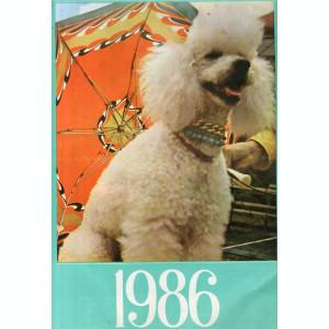 Calendar Romanesc A3+ 1977 1978 1982 1986 Tehnoimportexport Masiniexportimport