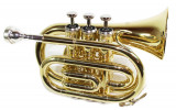 Trompeta de buzunar Cherrystone Auriu