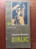 BIRLIC - VALENTIN SILVESTRU
