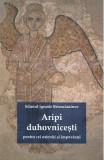Aripi duhovnicesti pentru cei osteniti si impovarati - Sfantul Ignatie Briancianinov