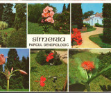 CPIB 16104 CARTE POSTALA - SIMERIA. PARCUL DENDROLOGIC, MOZAIC