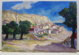 Balcic - Nicolcea Spineni