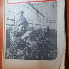 revista radio-tv saptamana 12-18 februarie 1978