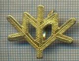 Y 1796 INSIGNA - MILITARA -SEMN DE ARMA -VANATORI DE MUNTE  -PENTRU COLECTIONARI