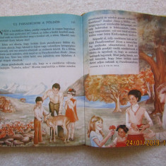 Biblia ilustrata pentru copii in limba maghiara.