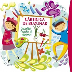 Carticica de buzunar 3. Coloram fructe - Roxana Geanta