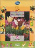Plantele – colectia Prima mea enciclopedie cu Winnie Ursuletul si prietenii, Disney