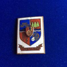 INSIGNA - HERALDICA - REPUBLICA SOCIALISTA ROMANIA - BIHOR