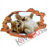 "Sticker ""Wall Crack"" Cat 6 - 120 x 80 cm"