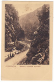 #2450- Romania, Petrozseny, Petrosani c.p. circulata 1911: Stramtoarea Surduc