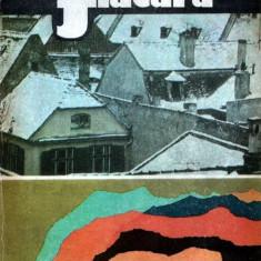 Flacăra, almanah 1984
