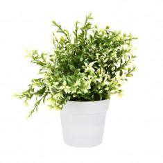 Planta artificiala decorativa cu frunze ascutite verde cu alb H 24 cm in ghiveci plastic alb 8.5x9cm