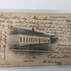 Gilau Cluj 1904 !!!