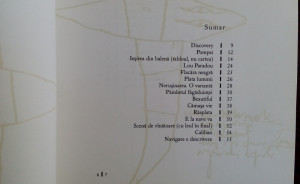 IOAN (T.) MORAR: NERUSINAREA(VERSURI 2002/DESENE DAN URSACHI/DEDICATIE-AUTOGRAF)