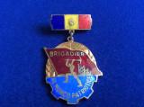 INSIGNA ROMANIA - FRUNTAS BRIGADIER AL MUNCII PATRIOTICE