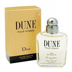 Christian Dior Dune Pour Homme EDT Tester 100 ml pentru barbati foto