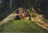 Carte postala Bucovina SV166 Putna - La chilia lui Daniil Sihastrul