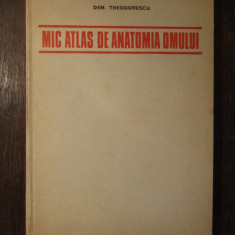 MIC ATLAS DE ANATOMIA OMULUI -DEM.THEODORESCU ,1982