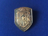 Insigne România - Insignă militară - Trupele de Geniu