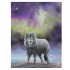 Tablou canvas lup, Aurora 19x25cm - Anne Stokes