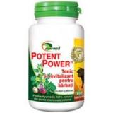 Potent Power Star International 100tb Cod: 3121