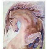 Acuarela armasar cabrat -tablouri tablou picturi pictura grafica decor