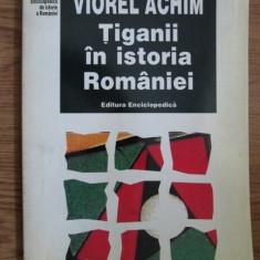 TIGANII IN ISTORIA ROMANIEI - VIOREL ACHIM