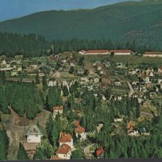 CPI B 11773  CARTE POSTALA -  SINAIA