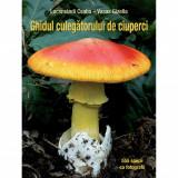 Ghidul culegătorului de ciuperci - 555 de specii-Locsmándi Csaba–Vasas Gizella, Casa, 2020
