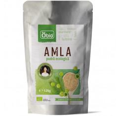 Amla pudra raw bio 125g