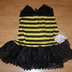 Costum carnaval serbare albina albinuta pentru copii de 8-9-10 ani, Din imagine
