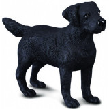 Figurina Labrador Retriever M Collecta, 9 x 6 cm