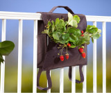 Cumpara ieftin Suport plante pentru balcon Omar M