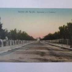 Rara! Targu Jiu-Bulevardul I.C.Brătianu,carte postala circulata 1909, Printata