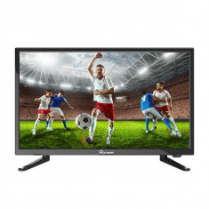 Televizor LED SkyMaster 22SF2500, 56 cm, Full HD, Negru