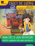 Modalități de lucru diferențiate. Limba și literatura română. Clasa a IV-a. Consolidare