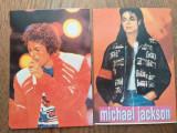 Michael Jackson, lot 6 calendare 1993