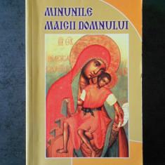MINUNILE MAICII DOMNULUI (1990)