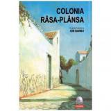Colonia Rasa-plansa + CD, Polirom, Ion Barbu