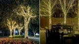 Cumpara ieftin Ghirlande Luminoase Copaci, 17 m, de Exterior/Interior, Instalatii luminoase copaci