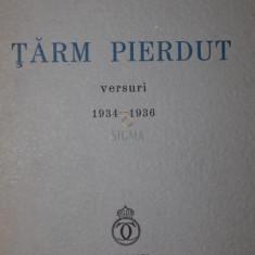 TARM PIERDUT - ION PILLAT