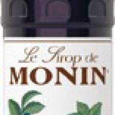 Sirop Monin Blueberry - Afine 700 ml
