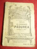 Putlitz -Ce povesteste padurea - Povesti -BPT 86 Ed.1908 ,Ed.Libr.Leon Alcalay