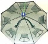 Halau, Crasnic, Varsa tip umbrela cu 8 intrari