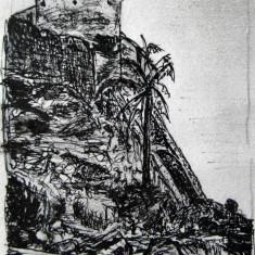 Alexandru Ursu-Bukowina - Cetatea Albă de pe Nistru a lui Ștefan cel Mare