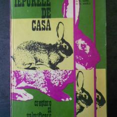 AL. GEORGEONI - IEPURELE DE CASA. CRESTERE SI VALORIFICARE