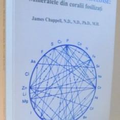 ELEMENTE CHIMICE MIRACULOASE , MINERALE DIN CORALII FOSILIZATI de JAMES CHAPPEL , 2004
