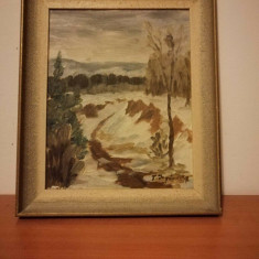 Tablou pictura ulei pe carton artist necunoscut nordic, semnat, 37x31 cm